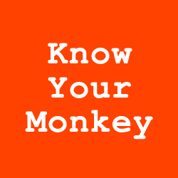 know-monkey-orange